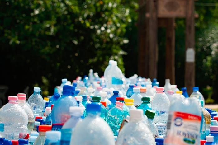 enzima mutante que degrada el plastico Portada