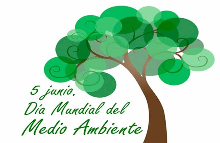 Dia Mudial del Medio Ambiente Portada