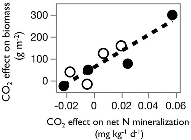 grafica comparativa aumento CO2 y nitrogeno en plantas C3 vs C4