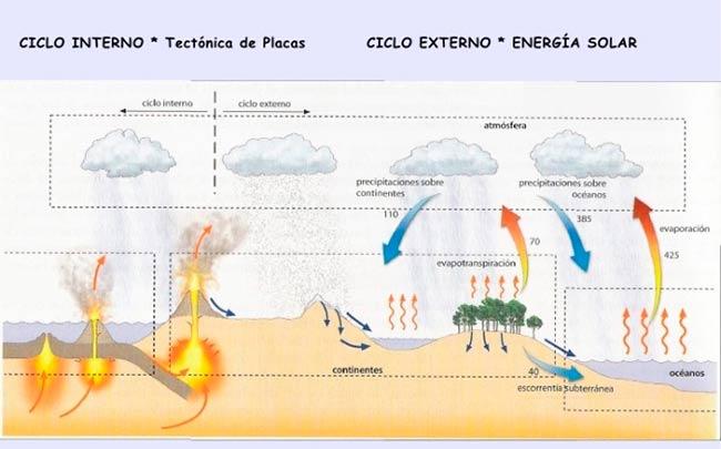 ciclo del agua interno y externo