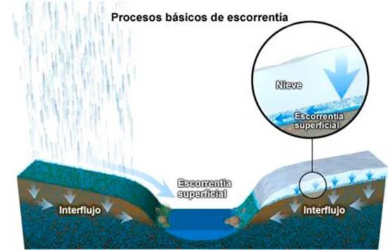 escorrentia del ciclo del agua
