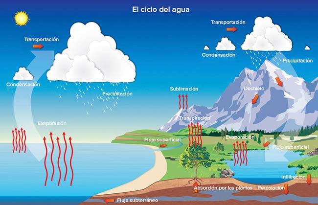 ciclo del agua fases