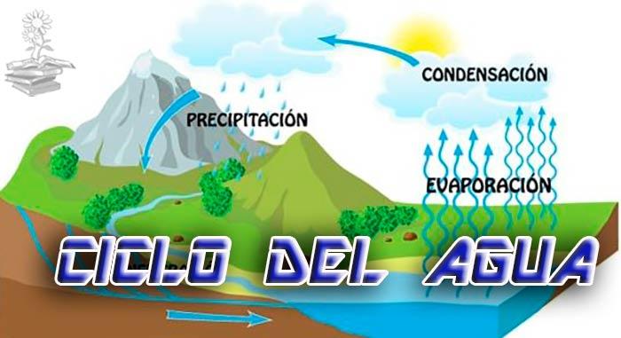 ciclo del agua portada