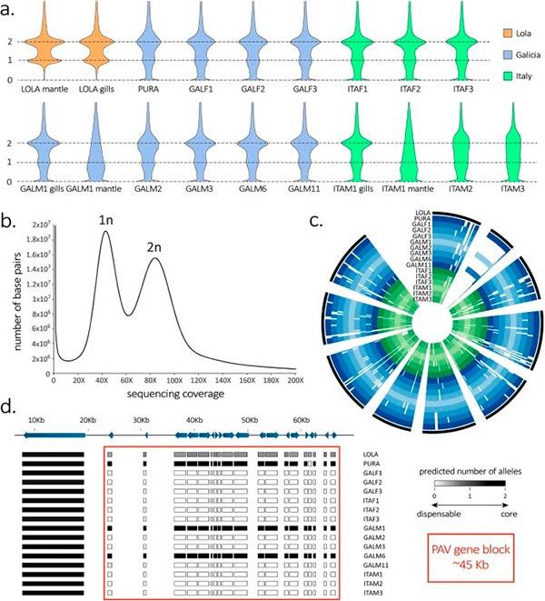 genoma del mejillon