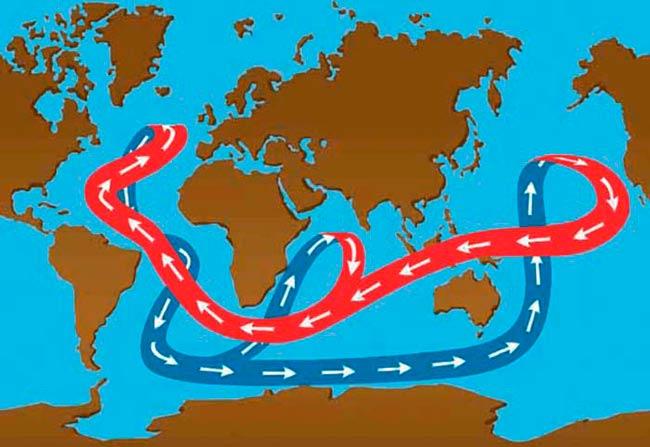 circulacion termohalina dibujo