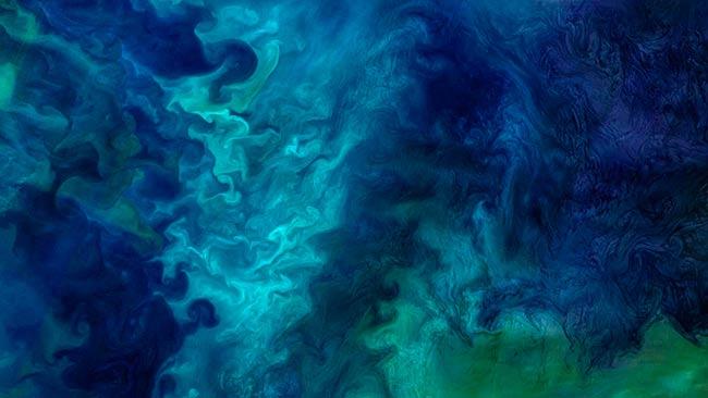 circulacion marina