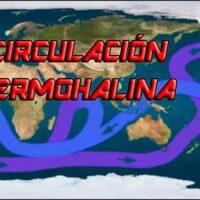 circulacion termohalina portada