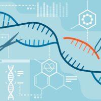 PCR portada