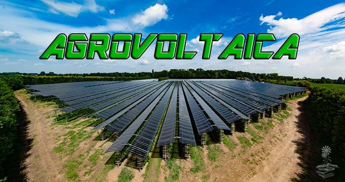Agrovoltaica o agrofotovoltaica: aplicación de energía solar en agricultura