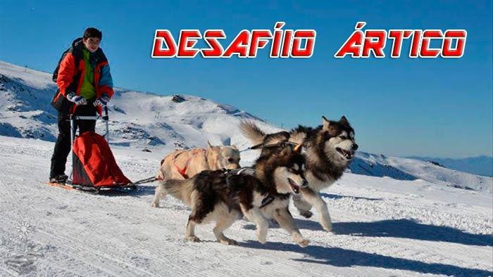 Desafio Artico portada