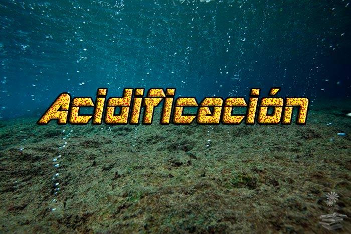 acidificacion de los oceanos portada