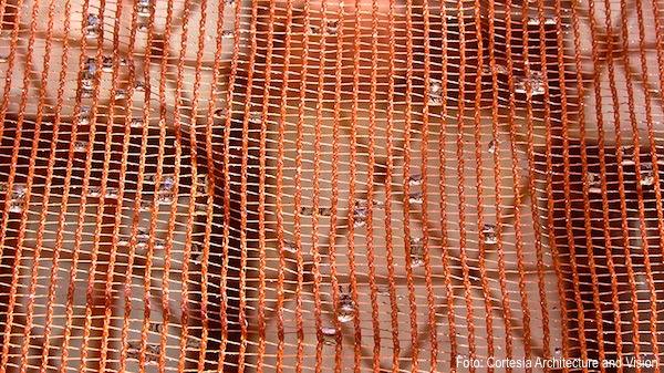 red de plastico biodegradable de Warka Water Tower