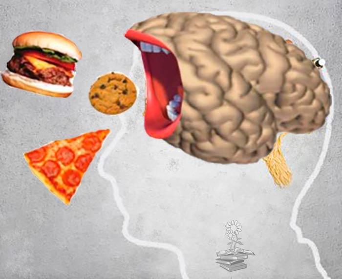 control del apetito dependiente del hipocampo Portada