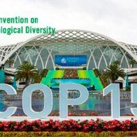 CBD COP 15 Portada